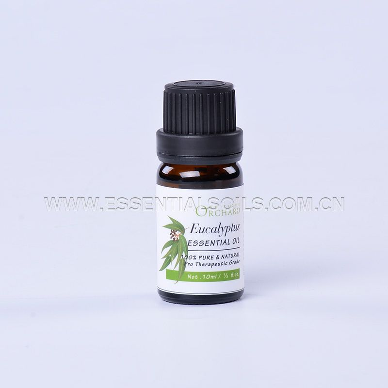 10ml-Eucalyptus Essential Oil